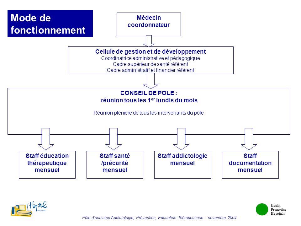 Health Promoting Hospitals Pôle dactivités Addictologie, Prévention, Education thérapeutique - novembre 2004 Médecin coordonnateur Cellule de gestion