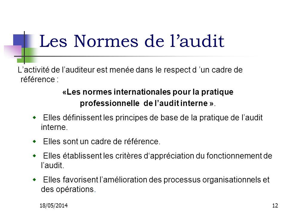Les Normes de laudit Lactivité de lauditeur est menée dans le respect d un cadre de référence : «Les normes internationales pour la pratique professionnelle de laudit interne ».