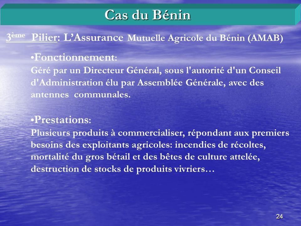 24 3 ème Pilier: LAssurance Mutuelle Agricole du Bénin (AMAB) Cas du Bénin Fonctionnement : Géré par un Directeur Général, sous l'autorité d'un Consei