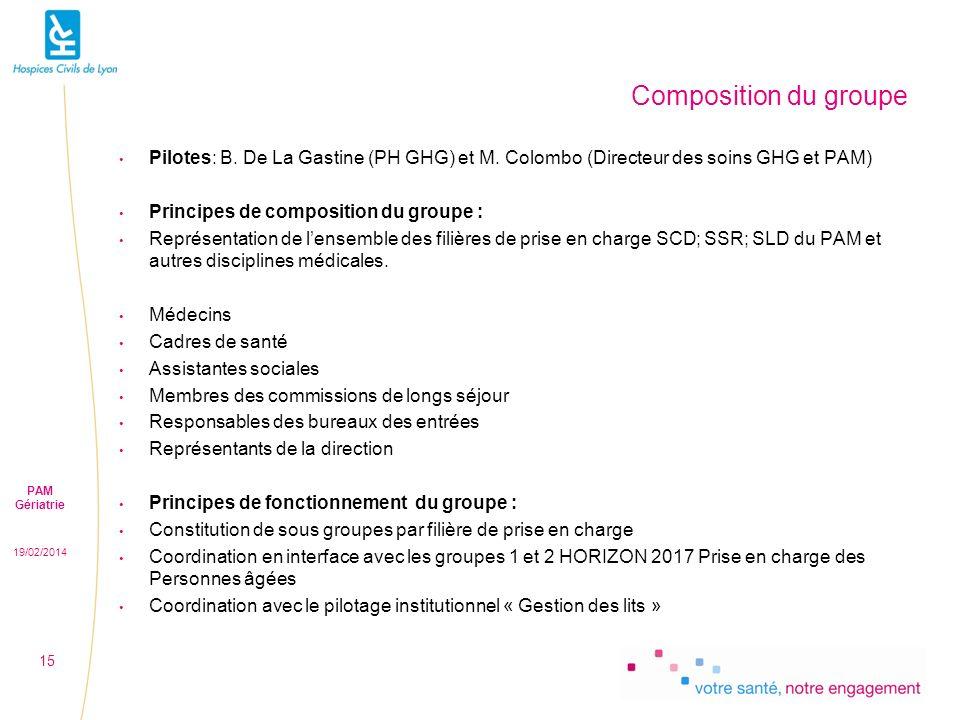 19/02/2014 PAM Gériatrie 15 Composition du groupe Pilotes: B.