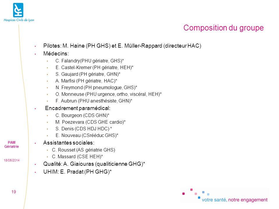 18/05/2014 PAM Gériatrie 19 Composition du groupe Pilotes: M.