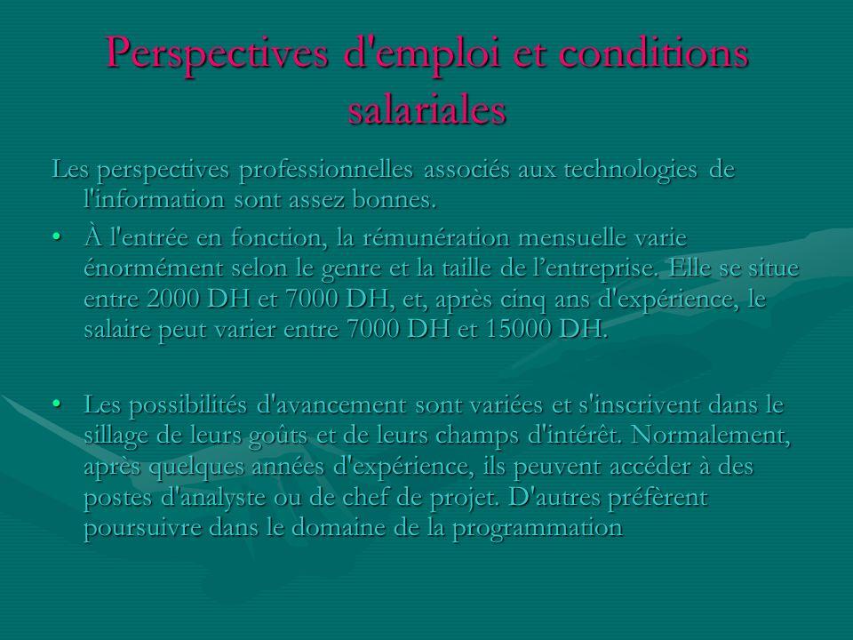Perspectives d'emploi et conditions salariales Les perspectives professionnelles associés aux technologies de l'information sont assez bonnes. À l'ent