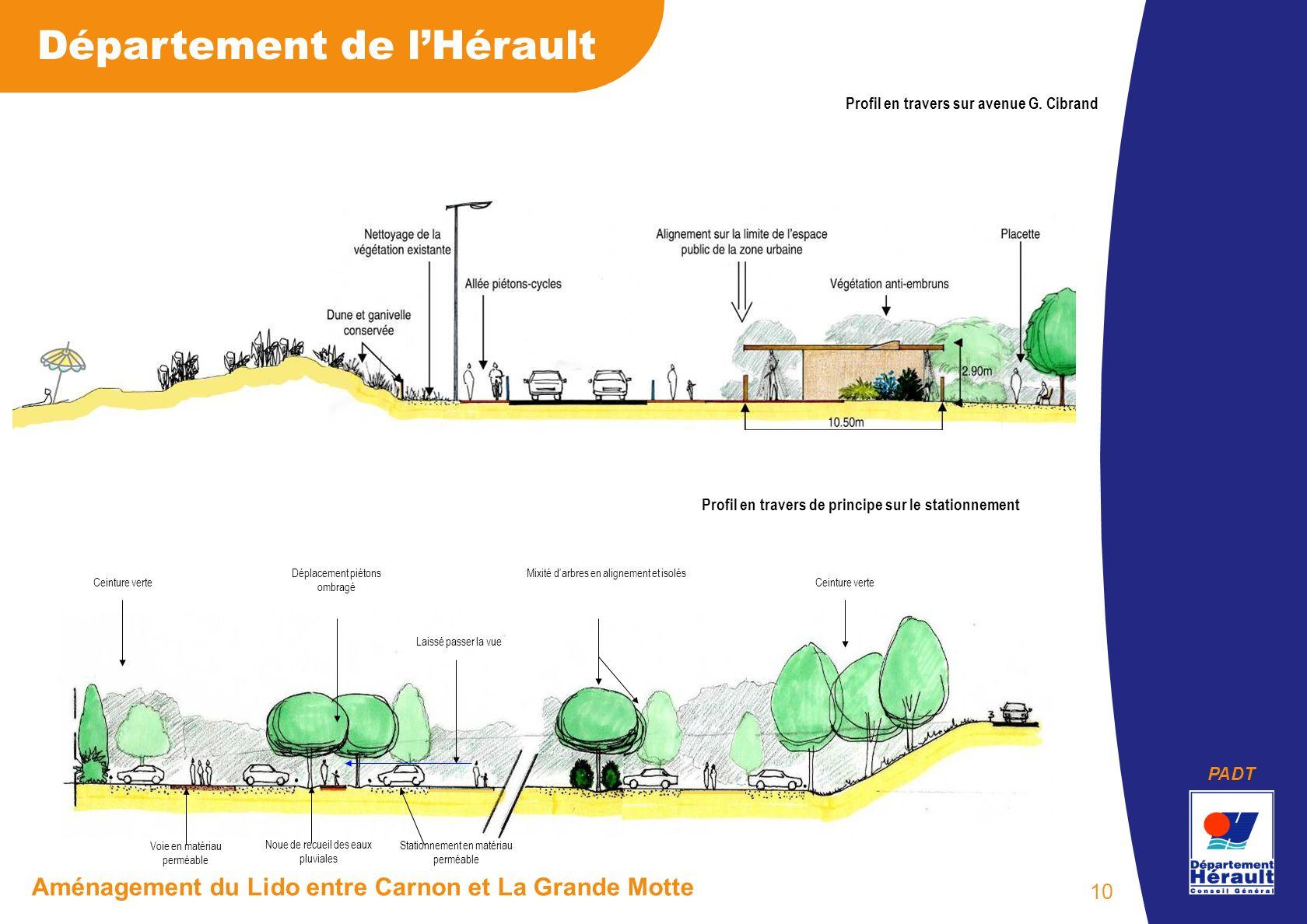 PADT Département de lHérault Aménagement du Lido entre Carnon et La Grande Motte 10 Profil en travers sur avenue G. Cibrand Profil en travers de princ