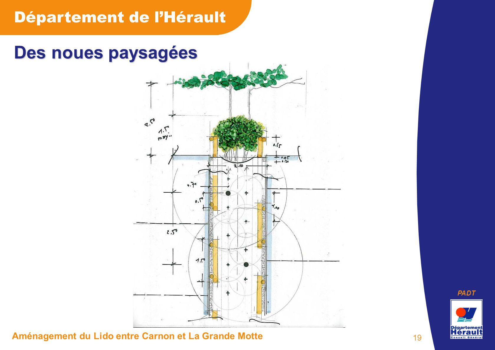 PADT Département de lHérault Aménagement du Lido entre Carnon et La Grande Motte 19 Des noues paysagées