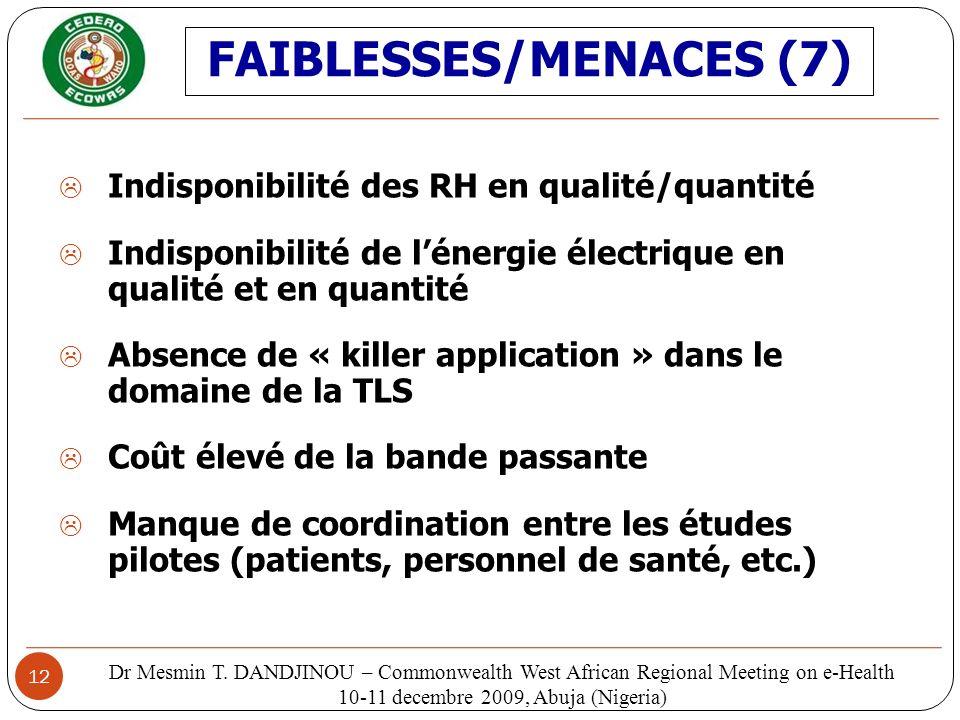 12 Indisponibilité des RH en qualité/quantité Indisponibilité de lénergie électrique en qualité et en quantité Absence de « killer application » dans