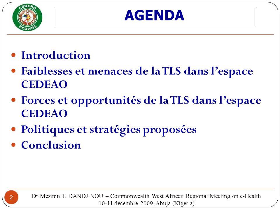 2 Introduction Faiblesses et menaces de la TLS dans lespace CEDEAO Forces et opportunités de la TLS dans lespace CEDEAO Politiques et stratégies propo