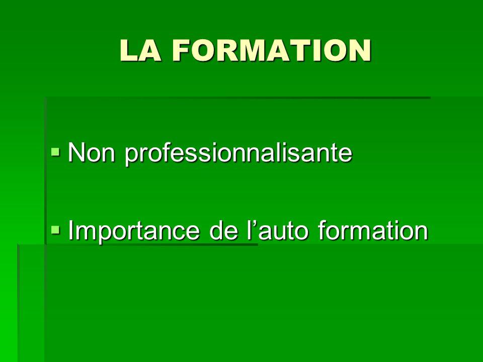 LA FORMATION Non professionnalisante Non professionnalisante Importance de lauto formation Importance de lauto formation