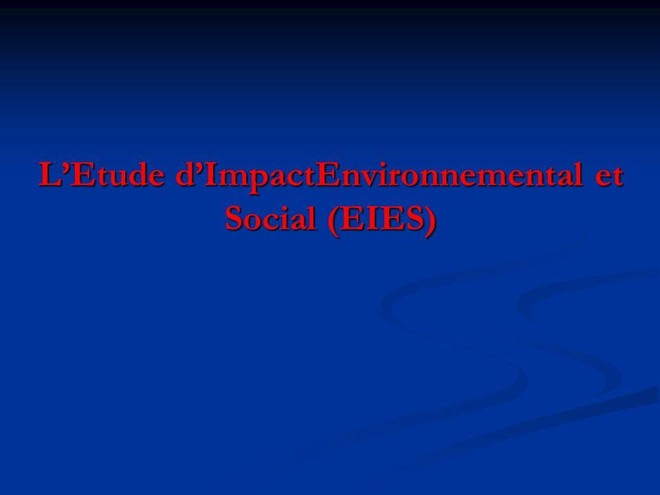 LEtude dImpactEnvironnemental et Social (EIES)