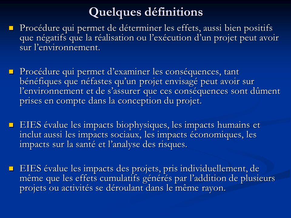 Quelques définitions Procédure qui permet de déterminer les effets, aussi bien positifs que négatifs que la réalisation ou lexécution dun projet peut