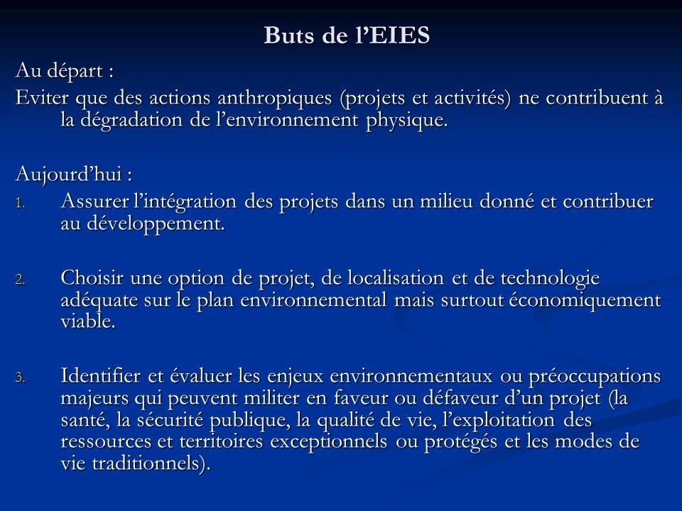 Buts de lEIES Au départ : Eviter que des actions anthropiques (projets et activités) ne contribuent à la dégradation de lenvironnement physique. Aujou