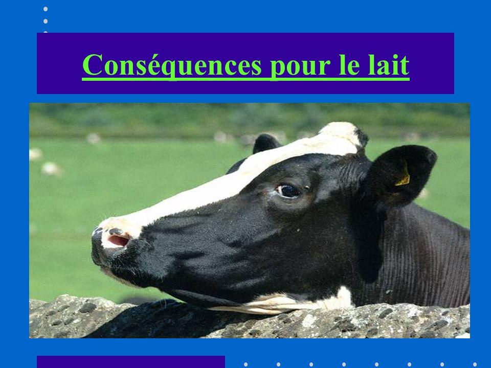 Conséquences pour le lait