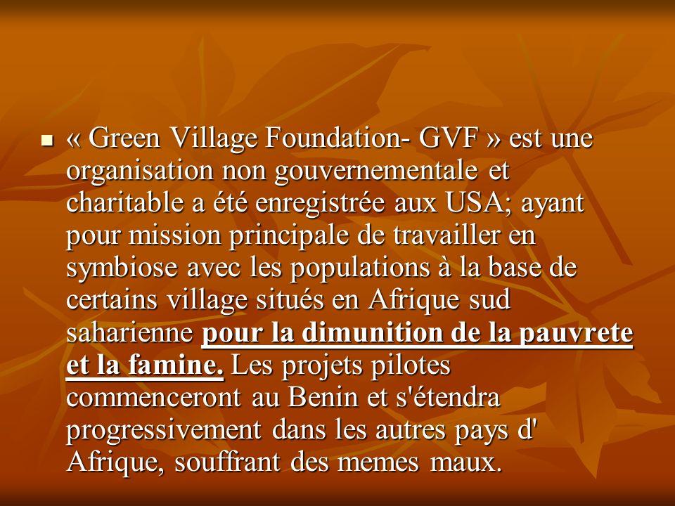 « Green Village Foundation- GVF » est une organisation non gouvernementale et charitable a été enregistrée aux USA; ayant pour mission principale de travailler en symbiose avec les populations à la base de certains village situés en Afrique sud saharienne pour la dimunition de la pauvrete et la famine.