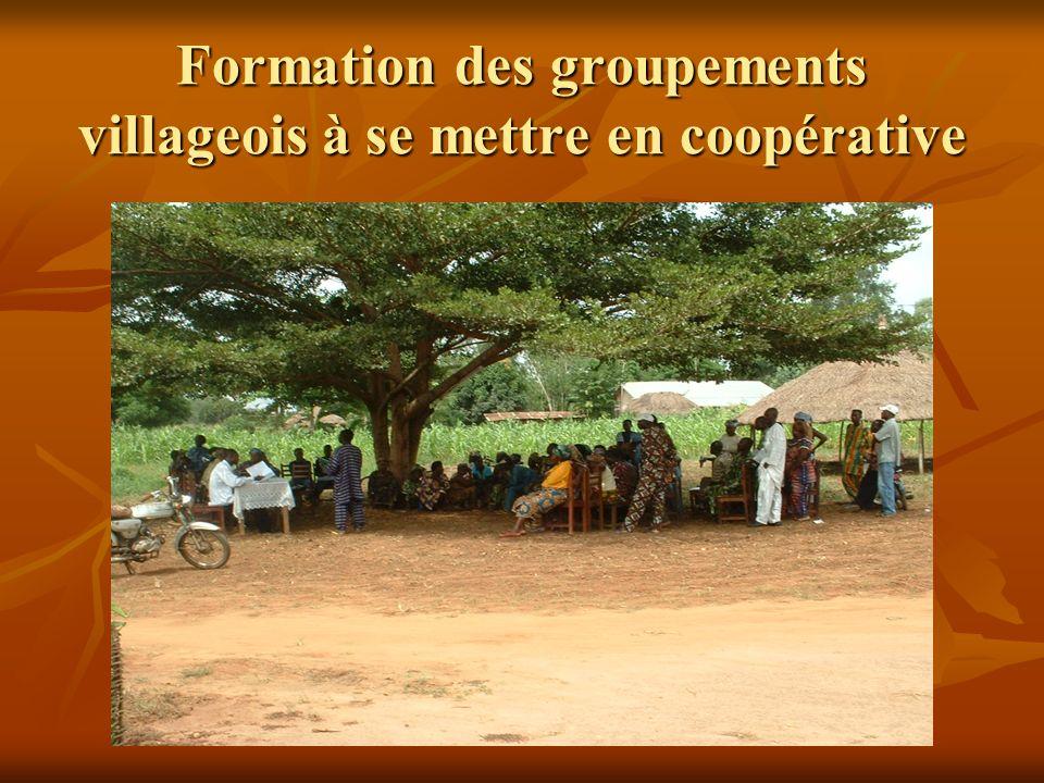 Formation des groupements villageois à se mettre en coopérative