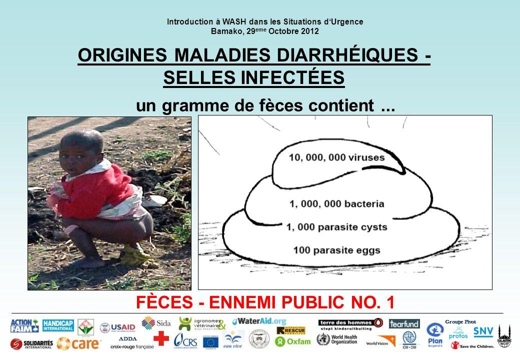 Groupe Pivot ADDA Introduction à WASH dans les Situations dUrgence Bamako, 29 eme Octobre 2012 ORIGINES MALADIES DIARRHÉIQUES - SELLES INFECTÉES un gr