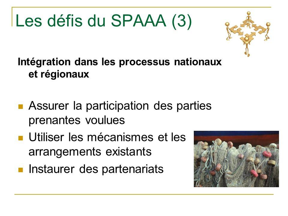 Les défis du SPAAA (3) Intégration dans les processus nationaux et régionaux Assurer la participation des parties prenantes voulues Utiliser les mécanismes et les arrangements existants Instaurer des partenariats