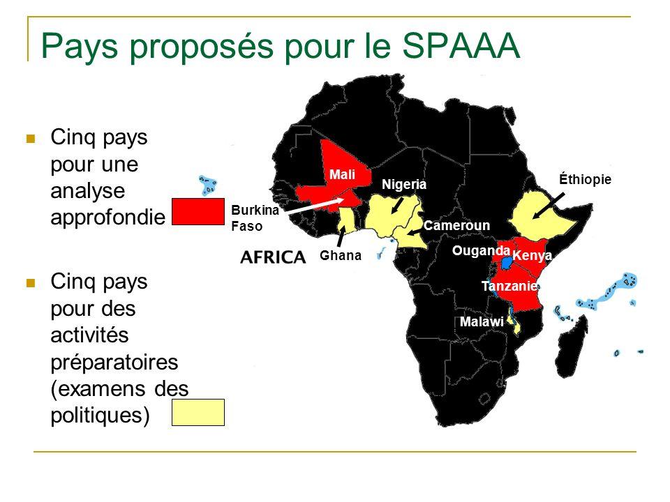 Pays proposés pour le SPAAA Cinq pays pour une analyse approfondie Cinq pays pour des activités préparatoires (examens des politiques) Mali Burkina Faso Ghana Nigeria Cameroun Éthiopie Ouganda Tanzanie Kenya Malawi
