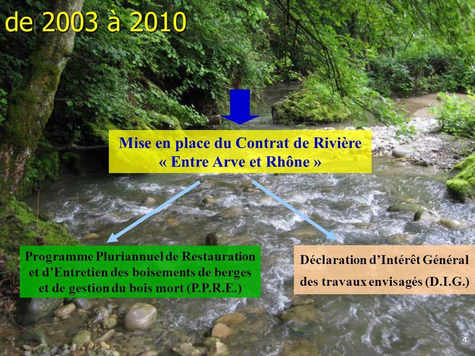 4 Mise en place du Contrat de Rivière « Entre Arve et Rhône » Déclaration dIntérêt Général des travaux envisagés (D.I.G.) Programme Pluriannuel de Restauration et dEntretien des boisements de berges et de gestion du bois mort (P.P.R.E.) de 2003 à 2010