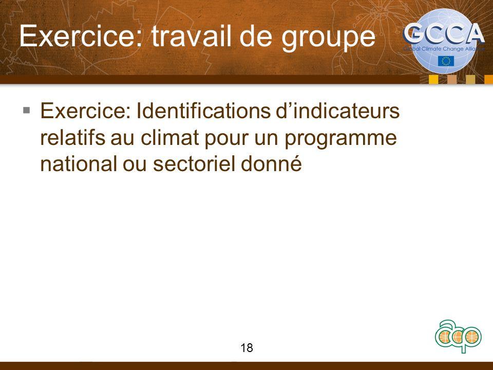 Exercice: travail de groupe Exercice: Identifications dindicateurs relatifs au climat pour un programme national ou sectoriel donné 18