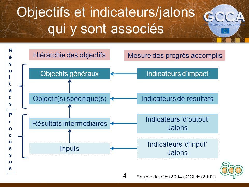 Objectifs et indicateurs/jalons qui y sont associés Hiérarchie des objectifs Mesure des progrès accomplis Objectifs généraux Objectif(s) spécifique(s) Résultats intermédiaires Inputs Indicateurs dimpact Indicateurs de résultats Indicateurs doutput Jalons Indicateurs dinput Jalons RésultatsRésultats ProcessusProcessus Adapté de: CE (2004), OCDE (2002) 4