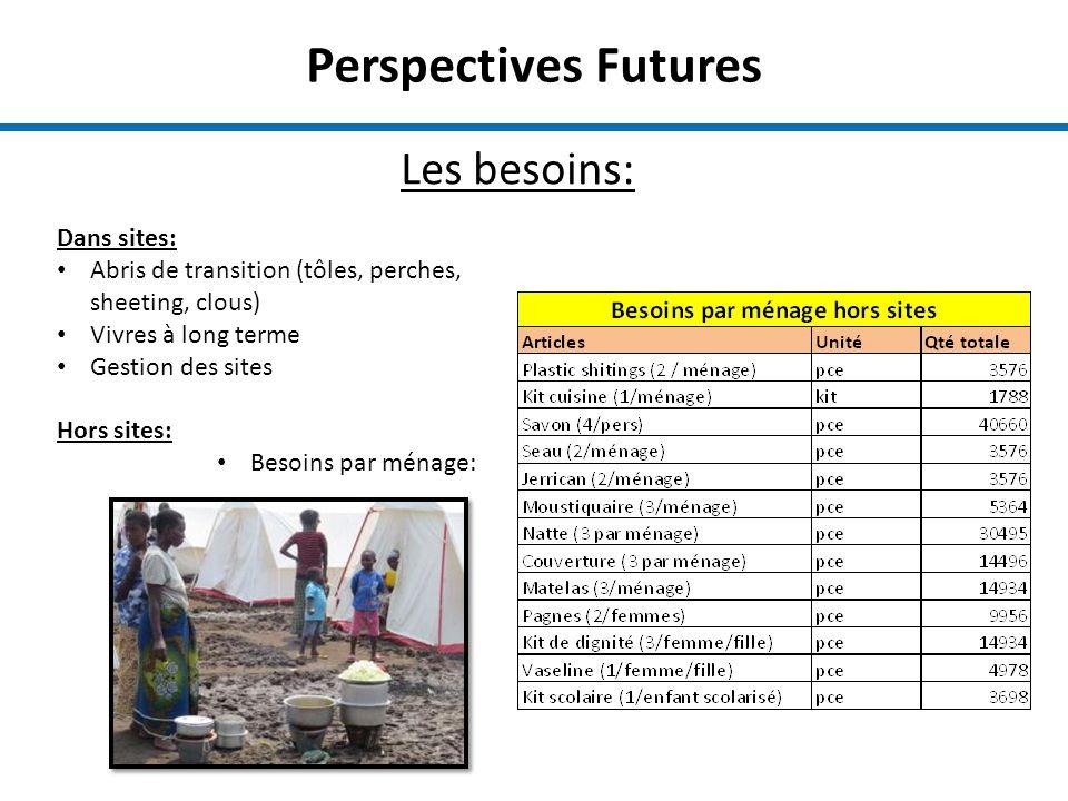 Perspectives Futures Les besoins: Dans sites: Abris de transition (tôles, perches, sheeting, clous) Vivres à long terme Gestion des sites Hors sites: Besoins par ménage: