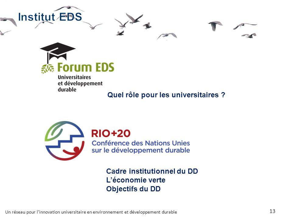 Un réseau pour linnovation universitaire en environnement et développement durable 13 Quel rôle pour les universitaires .