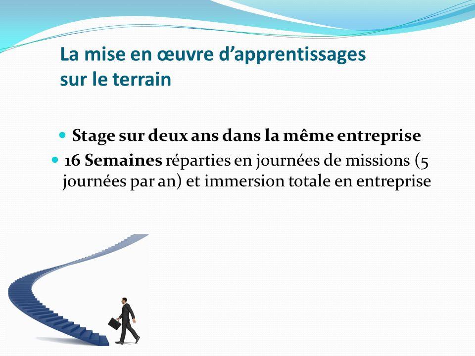 La mise en œuvre dapprentissages sur le terrain Stage sur deux ans dans la même entreprise 16 Semaines réparties en journées de missions (5 journées p