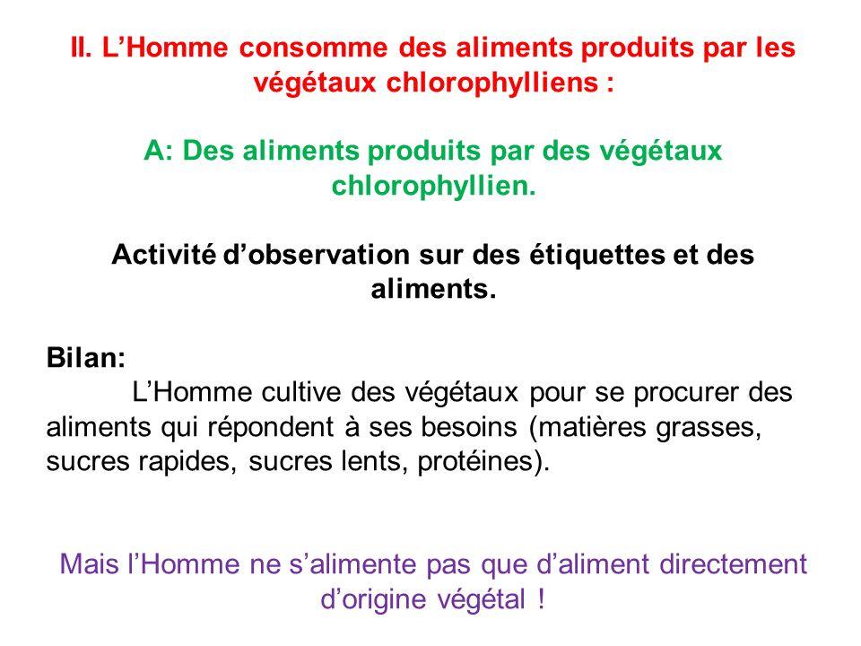 II. LHomme consomme des aliments produits par les végétaux chlorophylliens : A: Des aliments produits par des végétaux chlorophyllien. Activité dobser