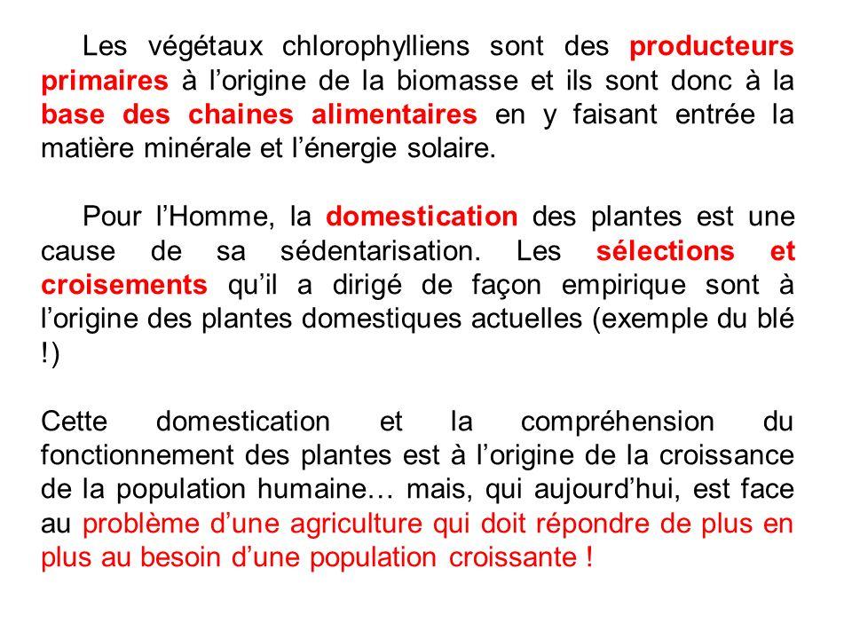 Cadre pédagogique: En primaire: Les élèves ont déjà acquis des notions de : - Matière vivante et matière non vivante (CP) - Conditions nécessaires à la germination dune graine (CP) - Chaines alimentaires (CE1) - Éléments nutritionnels (sucres, graisse,…) (CE1-CE2) - Préhistoire avec lhumanité passant du statut de chasseur/cueilleur nomade à un agriculteur/éleveur sédentaire (CM1) - Du temps : heure/jour/saisons/année