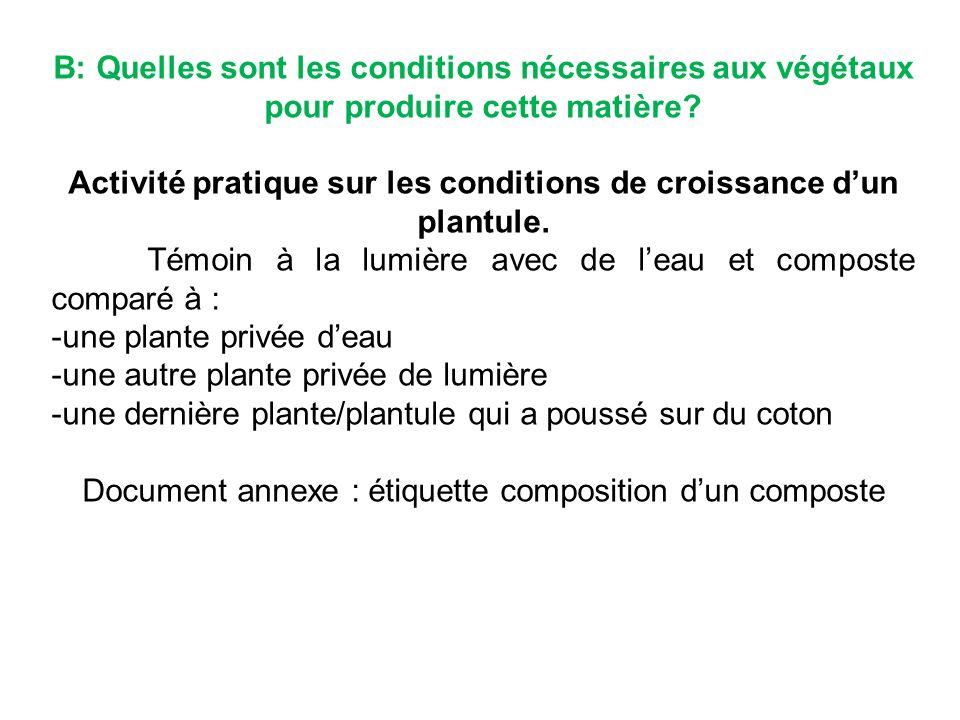B: Quelles sont les conditions nécessaires aux végétaux pour produire cette matière.
