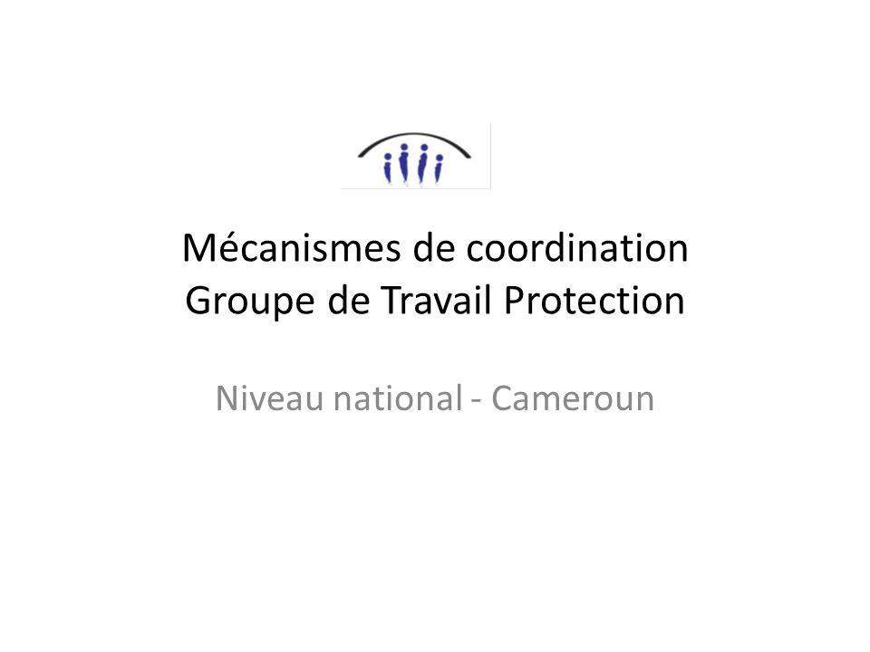 Mécanismes de coordination Groupe de Travail Protection Niveau national - Cameroun