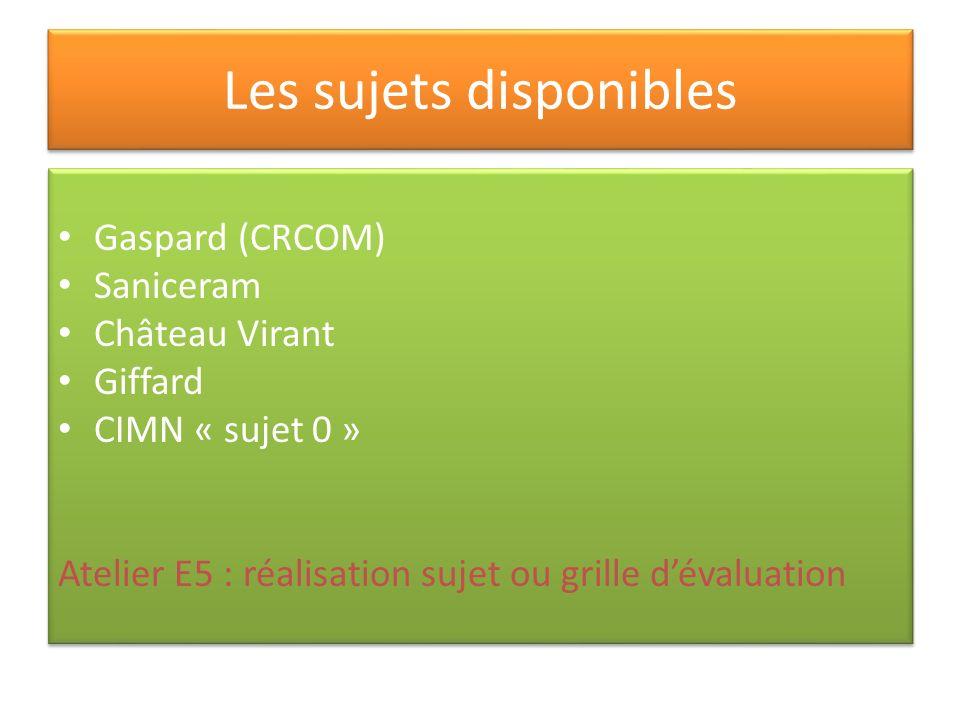 Les sujets disponibles Gaspard (CRCOM) Saniceram Château Virant Giffard CIMN « sujet 0 » Atelier E5 : réalisation sujet ou grille dévaluation Gaspard