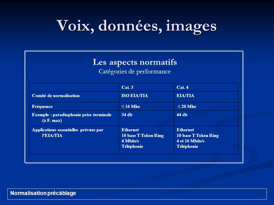 Voix, données, images Cat. 3Cat. 4 Comité de normalisationISO EIA/TIAEIA/TIA Fréquence 16 Mhz 20 Mhz Exemple : paradiophonie prise terminale (à F. max