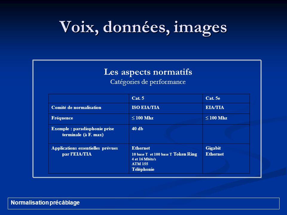 Voix, données, images Les aspects normatifs Catégories de performance Cat. 5Cat. 5e Comité de normalisationISO EIA/TIAEIA/TIA Fréquence 100 Mhz Exempl