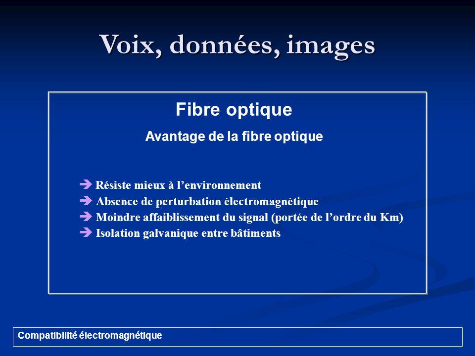 Voix, données, images Compatibilité électromagnétique Fibre optique Avantage de la fibre optique Résiste mieux à lenvironnement Absence de perturbatio