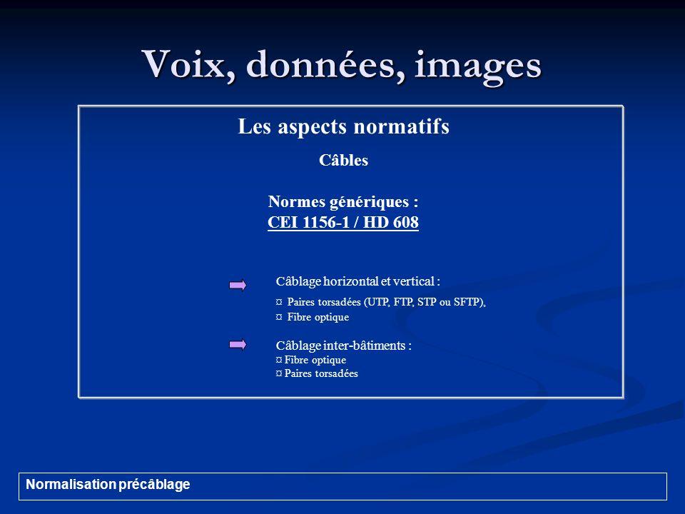 Voix, données, images Les aspects normatifs Câbles Normes génériques : CEI 1156-1 / HD 608 Câblage horizontal et vertical : ¤ Paires torsadées (UTP, F
