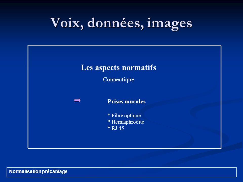 Voix, données, images Les aspects normatifs Connectique Prises murales * Fibre optique * Hermaphrodite * RJ 45 Normalisation précâblage