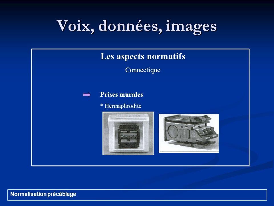 Voix, données, images Les aspects normatifs Connectique Prises murales * Hermaphrodite Normalisation précâblage