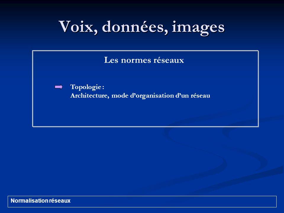Voix, données, images Les normes réseaux Topologie : Architecture, mode dorganisation dun réseau Normalisation réseaux
