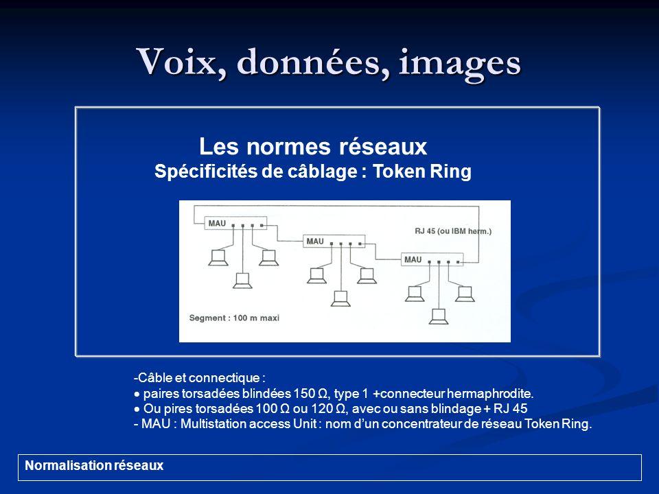 Voix, données, images - Câble et connectique : paires torsadées blindées 150 Ω, type 1 +connecteur hermaphrodite. Ou pires torsadées 100 Ω ou 120 Ω, a