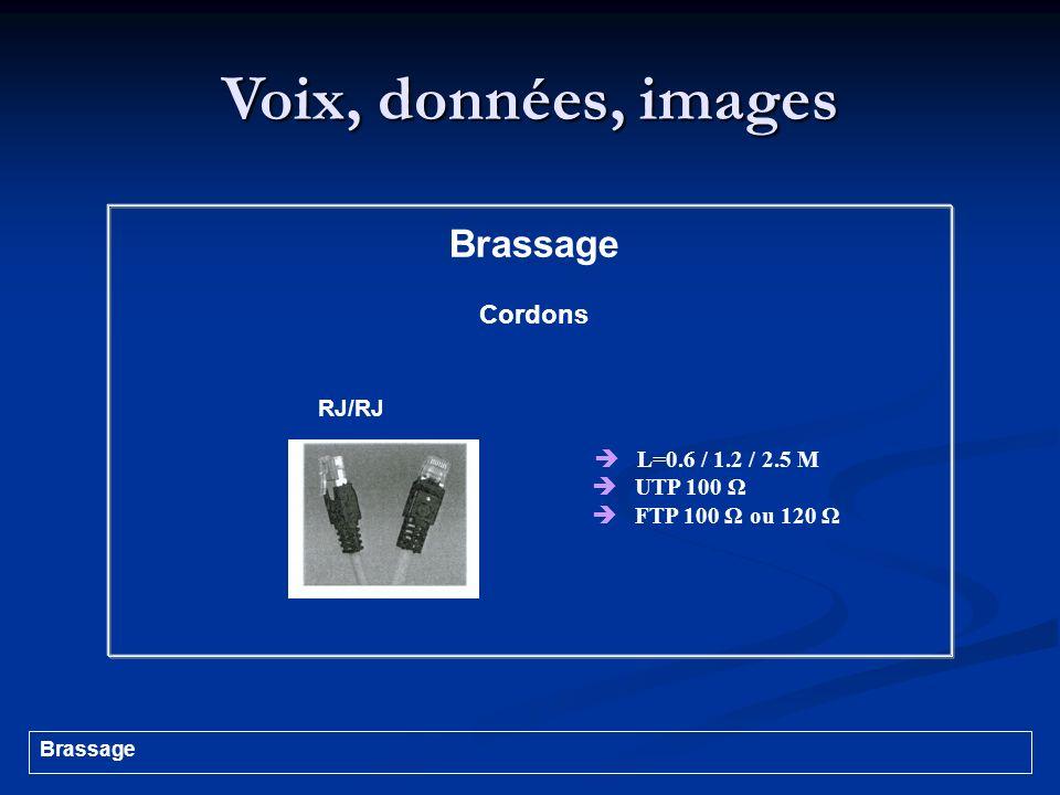 Voix, données, images L=0.6 / 1.2 / 2.5 M UTP 100 Ω FTP 100 Ω ou 120 Ω Brassage Cordons RJ/RJ Brassage