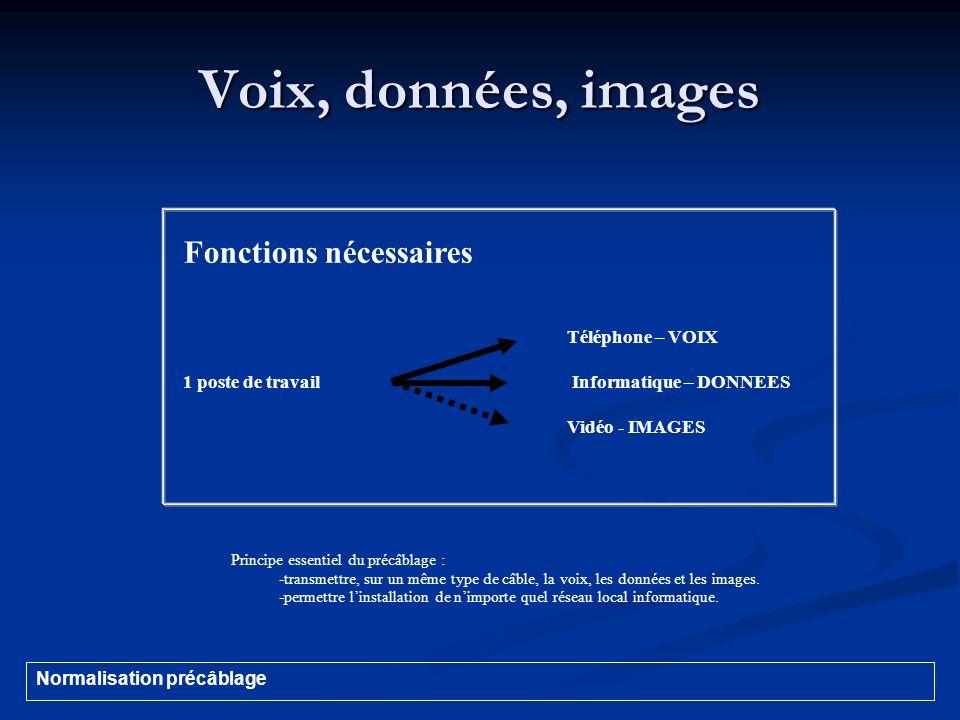 Voix, données, images Les normes réseaux Définissent des caractéristiques précises pour chaque réseau : Topologie Méthode daccès Débit Distance maxi sans répétition Spécificité de câblage Normalisation réseaux