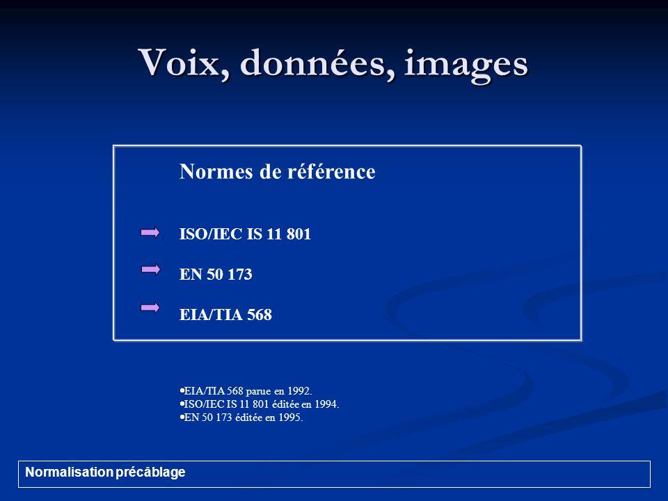 Voix, données, images Normes de référence ISO/IEC IS 11 801 EN 50 173 EIA/TIA 568 EIA/TIA 568 parue en 1992. ISO/IEC IS 11 801 éditée en 1994. EN 50 1