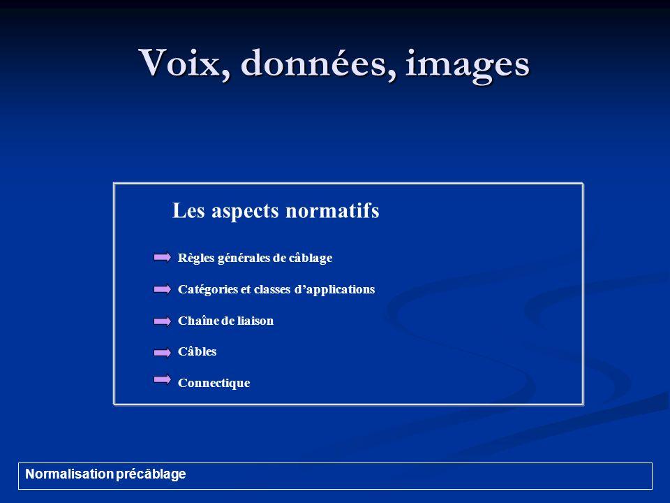 Voix, données, images Les aspects normatifs Connectique Prises murales * Fibre optique Normalisation précâblage