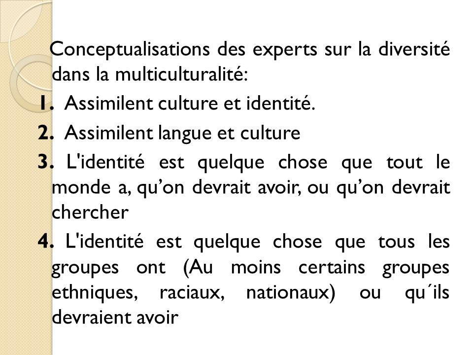 Conceptualisations des experts sur la diversité dans la multiculturalité: 1.