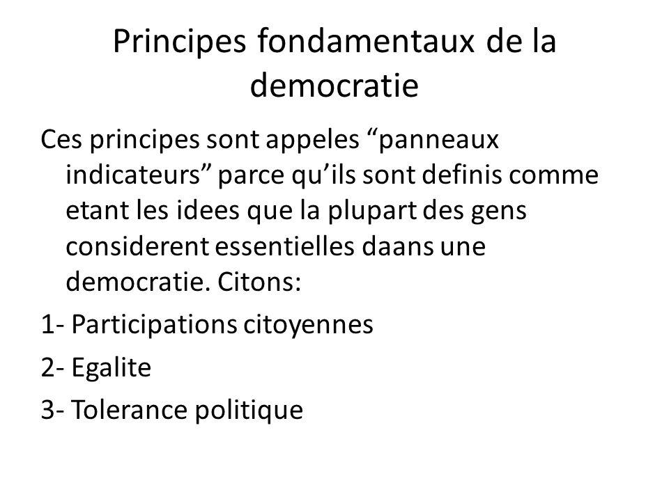Principes fondamentaux de la democratie Ces principes sont appeles panneaux indicateurs parce quils sont definis comme etant les idees que la plupart
