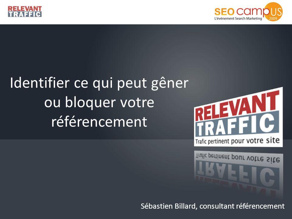 Identifier ce qui peut gêner ou bloquer votre référencement Sébastien Billard, consultant référencement