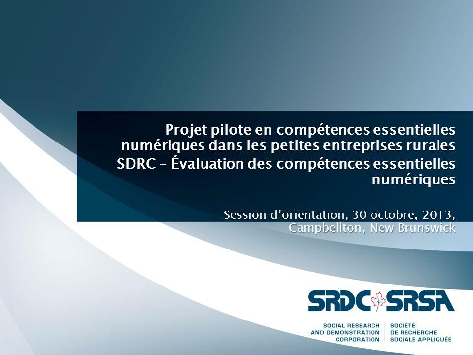 Projet pilote en compétences essentielles numériques dans les petites entreprises rurales SDRC – Évaluation des compétences essentielles numériques Session dorientation, 30 octobre, 2013, Campbellton, New Brunswick