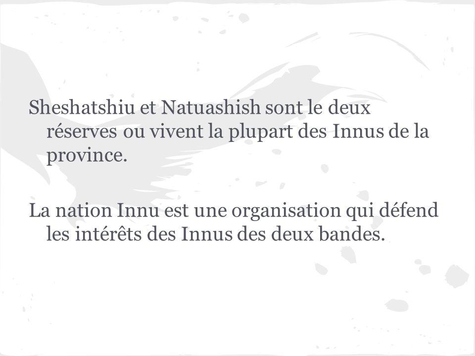 Sheshatshiu et Natuashish sont le deux réserves ou vivent la plupart des Innus de la province. La nation Innu est une organisation qui défend les inté