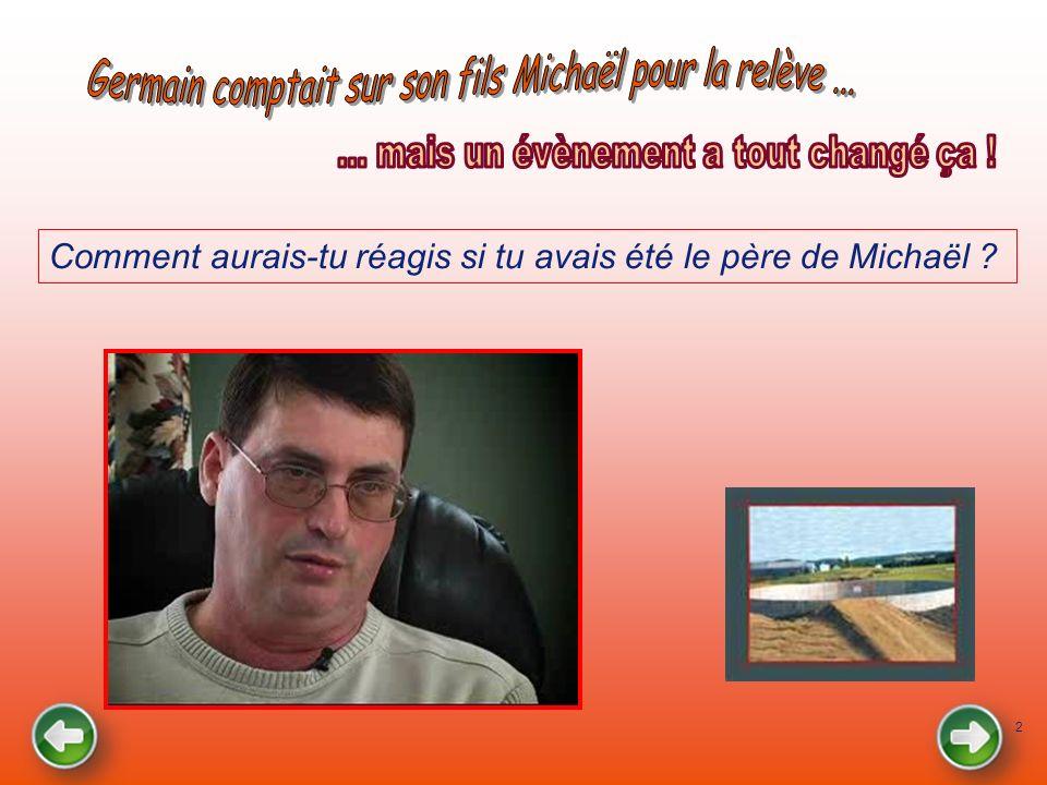 2 Comment aurais-tu réagis si tu avais été le père de Michaël ?