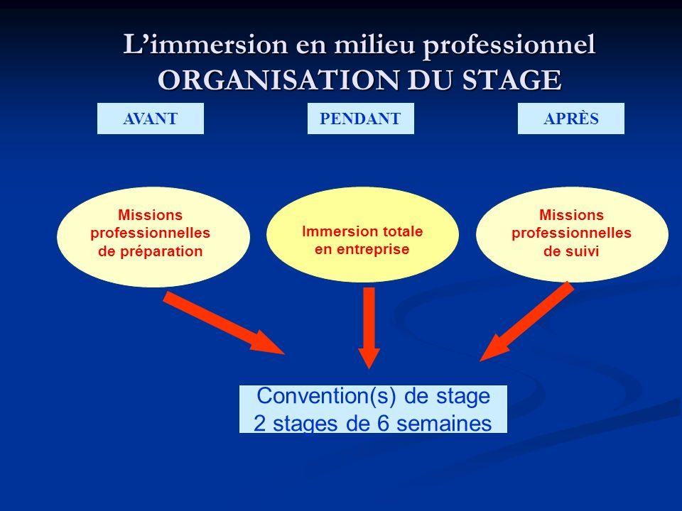Limmersion en milieu professionnel ORGANISATION DU STAGE AVANTPENDANTAPRÈS Missions professionnelles de suivi Missions professionnelles de préparation